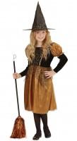 Parti Yıldızı - Altın-Siyah Renk Cadı Elbisesi