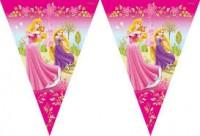 Parti Yıldızı - Disney Prensesleri ve Şatosu Bayrak Afiş