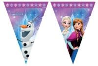 Parti Yıldızı - Frozen Northern Lights Bayrak Afiş