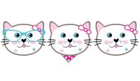 PD - Miss Cat Maske 6 Adet