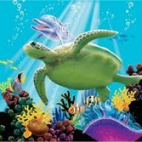 Parti Yıldızı - Okyanus Partisi 16 lı Küçük Peçete