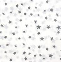 Parti Yıldızı - Yıldız Peçete Gümüş 20 li